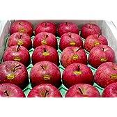 青森産 いかりりんご 超新鮮 ふじ  5kg 中玉18~20個入り