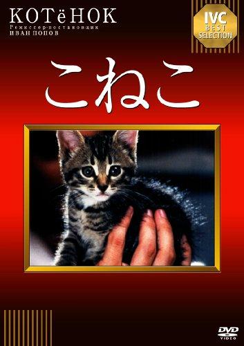 ネコたちの名演技にメロメロ 20年前の傑作ネコ映画が復活