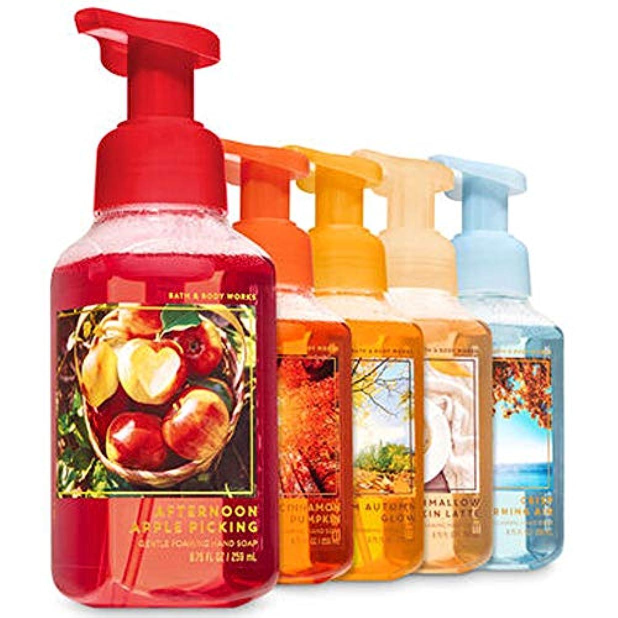手綱腸対称FALL TRADITIONS Gentle Foaming Hand Soap, 5-Pack [海外直送品]