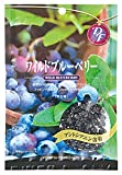 共立食品 ワイルドブルーベリー 52g