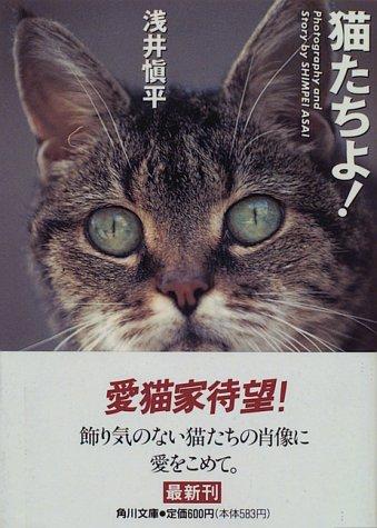 猫たちよ! (角川文庫)の詳細を見る