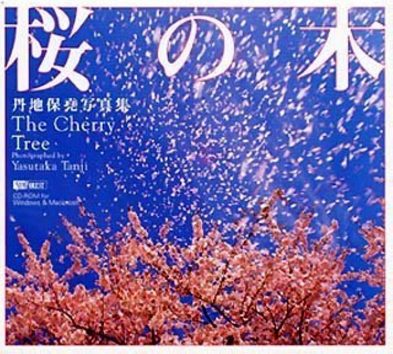 背が高い子羊寝具丹地保堯写真集 桜の木 The Cherry Tree