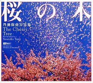 丹地保堯写真集 桜の木 The Cherry Tree