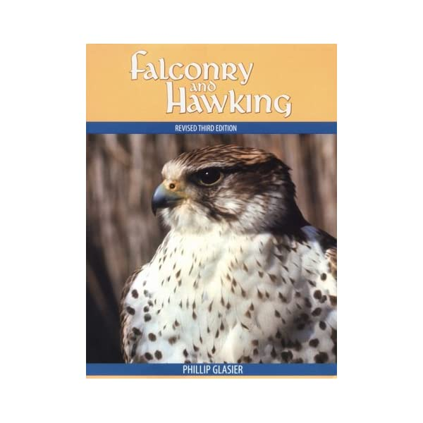 Falconry and Hawkingの商品画像