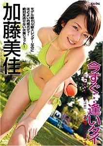 加藤美佳 今すぐ・・・逢いタイ [DVD]