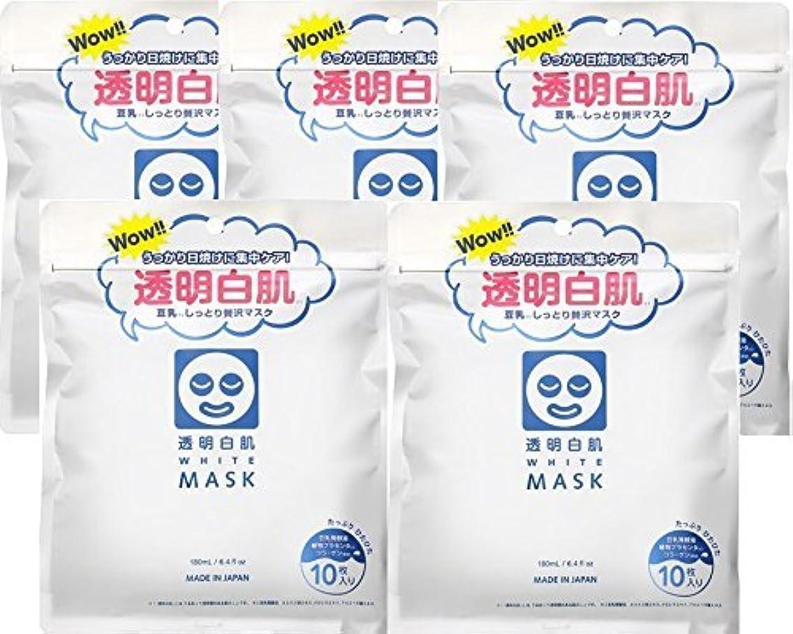 レンズ投げ捨てるメモ透明白肌 ホワイトマスクN×5個セット