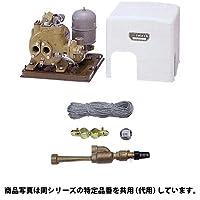 【セット商品】イワヤ深井戸ポンプ JPS-300F-50 (50hz用/単相100V/出力300W) ×数量1個 と 砲金ジェット (吸上高さ12m) 4J12B3×数量1個のセット