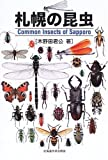 札幌の昆虫 画像