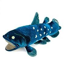 カロラータ シーラカンス Mサイズ ぬいぐるみ (解説知識タグ付き) 古代魚 [やさしい手触り] 21cm×15.5cm×36cm