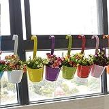 Ourwarm® プランター 植木鉢 壁掛けフラワーポット ガーデニング 家庭菜園・ベランダ菜園用(10色セット)