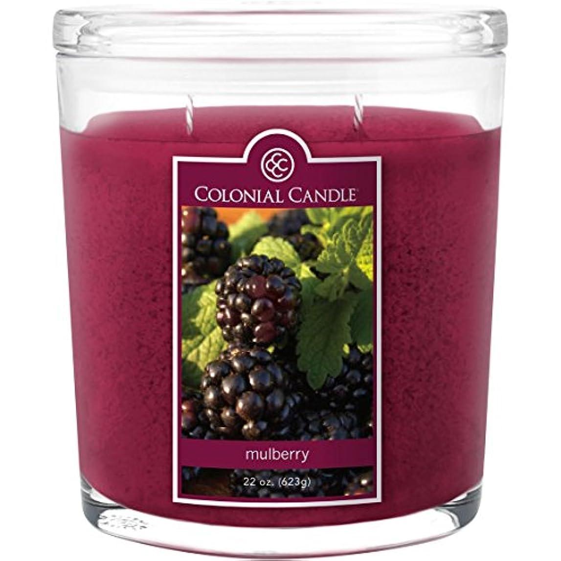 後世教プレートColonial Candle Mulberry 22 oz Scented Oval Jar Candle by Colonial Candle
