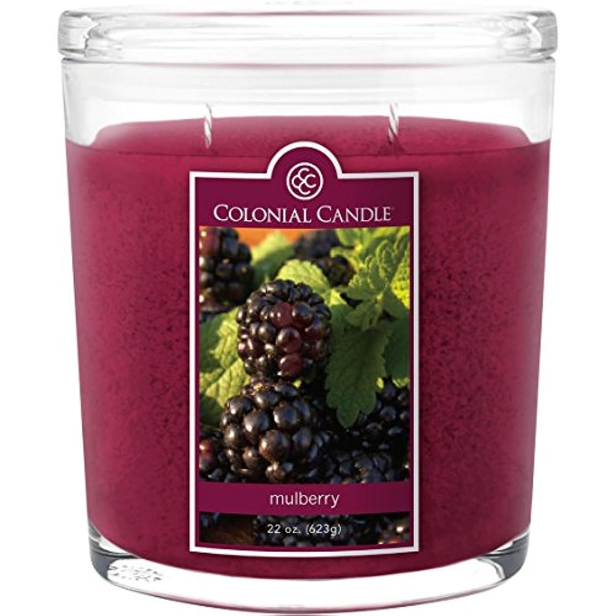 みがきます現れるサイバースペースColonial Candle Mulberry 22 oz Scented Oval Jar Candle by Colonial Candle