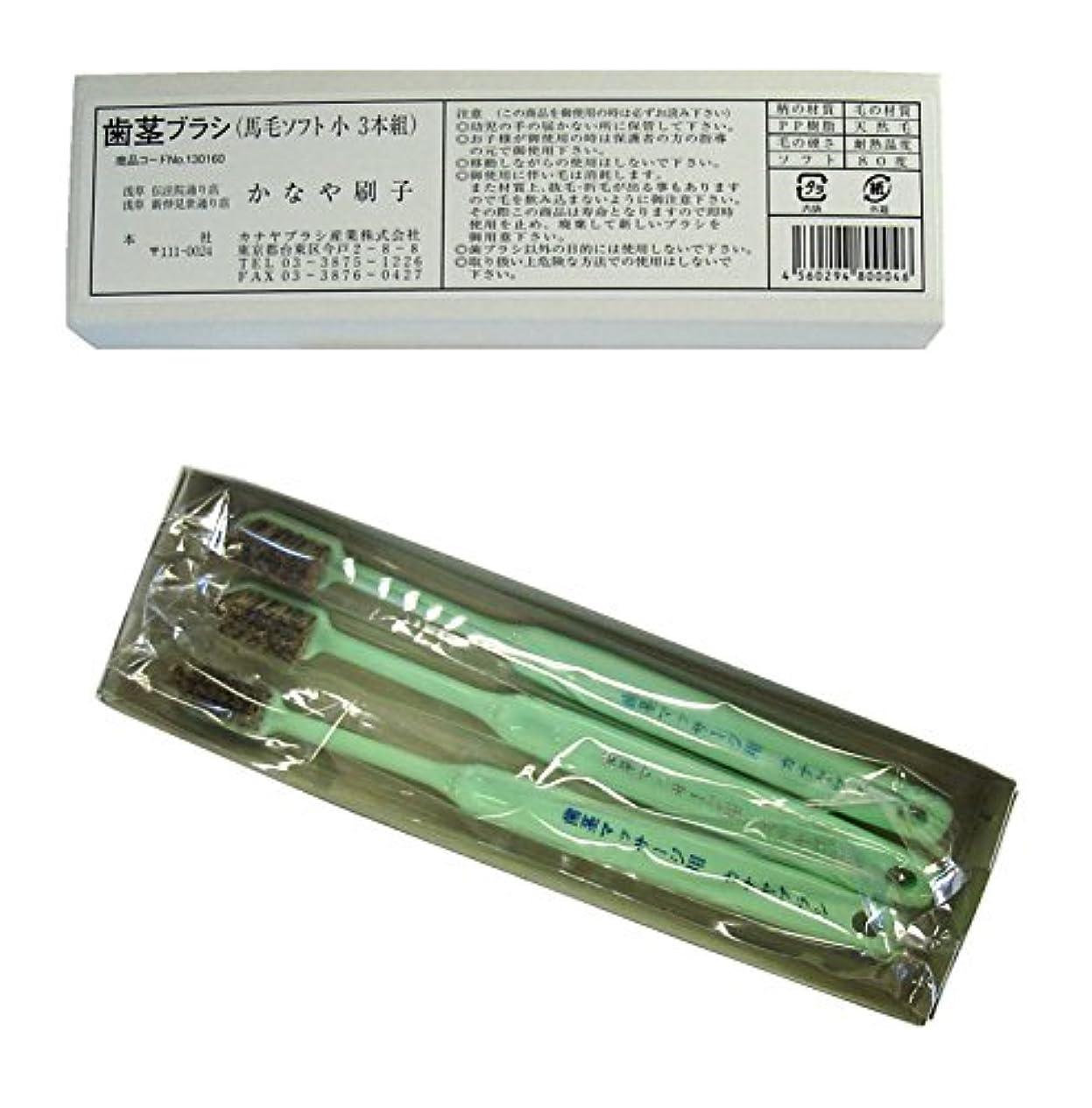 人類したい手書き馬毛歯茎ブラシ(3本入り) 絶品! カナヤブラシ製品 毛質:超ソフト