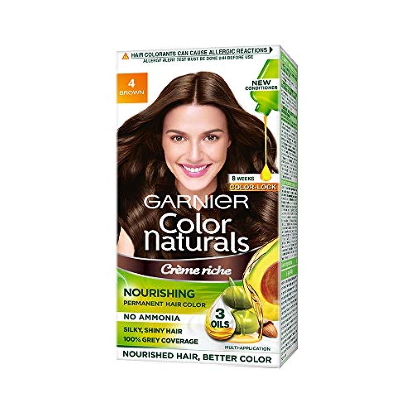 クラックポット歩道現代Garnier Color Naturals, Shade 4, Brown (70ml+60g)