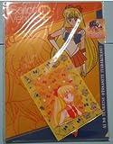 美少女戦士セーラームーン セーラーヴィーナス ファイル 3枚 20周年