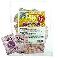 夢フル ポップコーン味付け調味料 3g×50袋 業務用 お祭り イベント (梅かつお味)