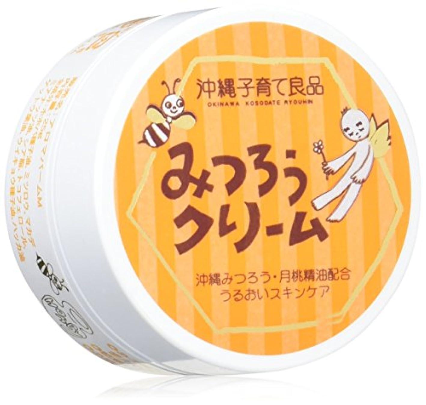打撃輪郭通訳沖縄子育て良品 みつろうクリーム (25g)