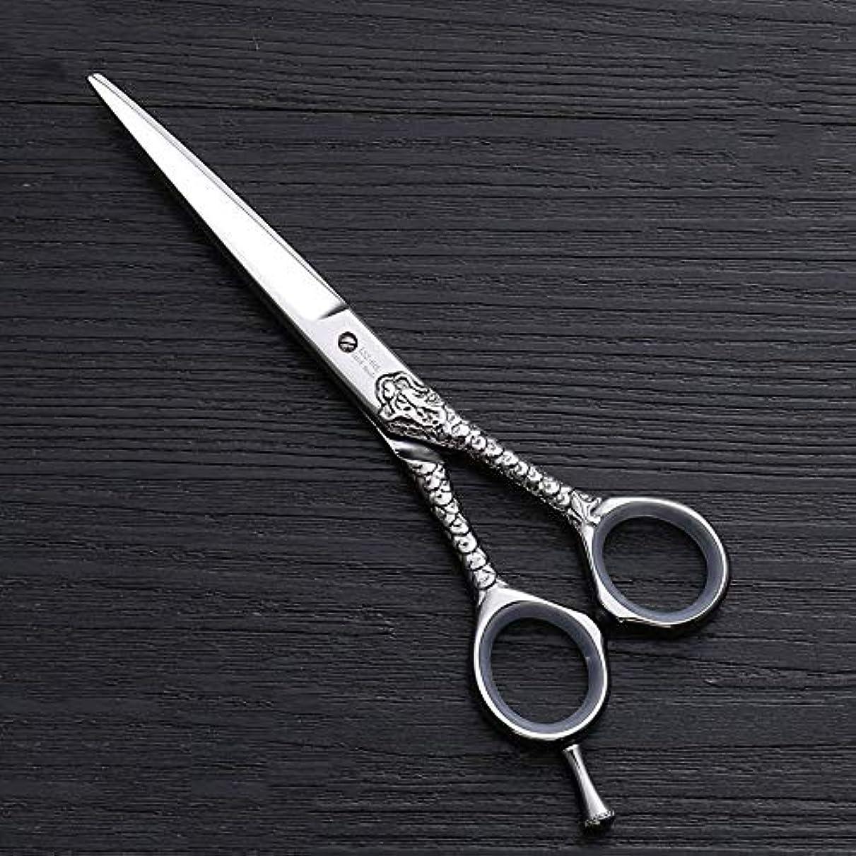 誠意ここに元に戻すハイエンドのパーソナライズされたプロのバリカン、6.0インチストレートプロのカット理髪はさみ モデリングツール (色 : Silver)