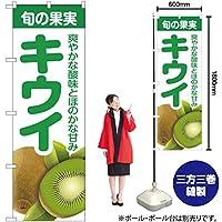 のぼり旗 旬の果実 キウイ JA-246 (受注生産)【宅配便】 [並行輸入品]
