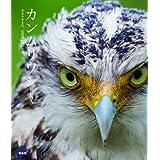 カンムリワシ―守るべきもの、石垣島の白い天使