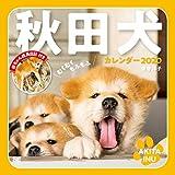 むくむくもふもふ 秋田犬 カレンダー 2020 (翔泳社カレンダー)