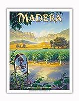 マデラ(サン・ホアキン・バレー)・ワイナリー - セントラルヴァレーAVAブドウ園 - カリフォルニアワインカントリーアート によって作成された カーン・エリクソン - アートポスター - 28cm x 36cm
