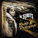 Young & Dangerous [12 inch Analog]
