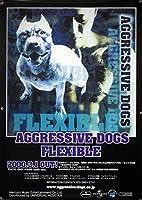 AGGRESSIVE DOGS アグレッシヴドッグス B2ポスター 1S01005