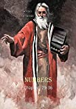 Books of Moses Numbers Vol. 4 Chapters 28-36