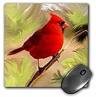 3drose LLC 8x 8x 0.25インチマウスパッド、Red Cardinal ( MP _ 4442_ 1)