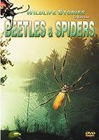 Beetles & Spiders [DVD]