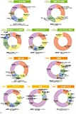 日経業界地図 2020年版 画像