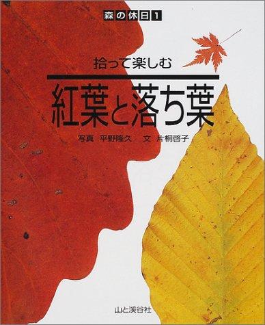 拾って楽しむ紅葉と落ち葉 (森の休日)...