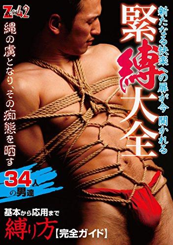 SM-ZV042 緊縛大全 [DVD]