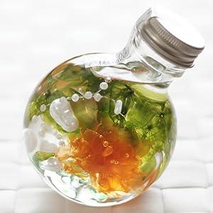 ハーバリウム 丸ボトル (カーネーション オレンジ)の関連商品4