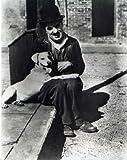 ブロマイド写真★『犬の生活』チャールズ・チャップリン/犬と座る