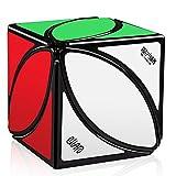 D-Fantix スキューブ キューブ Qiyi 異なる スピードキューブ 立体パズル スムーズ回転 不規則 競技用 知育玩具 おもちゃ