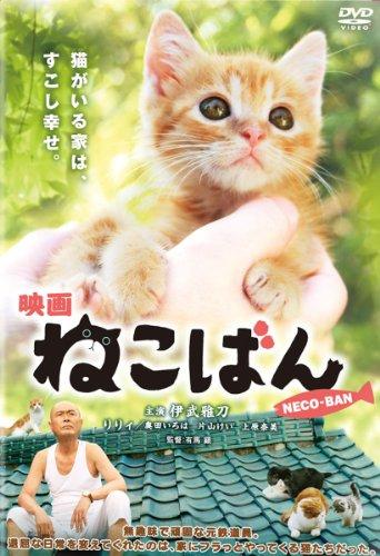 映画 ねこばん [DVD]