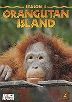 Orangutan Island: Season 1 [DVD] [Import]