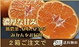 静岡県産名物青島三ヶ日みかん5kg【少しわけあり品】2箱(10kg)注文で送料無料 ※2箱ご注文の場合10キロ箱1箱での発送になります。