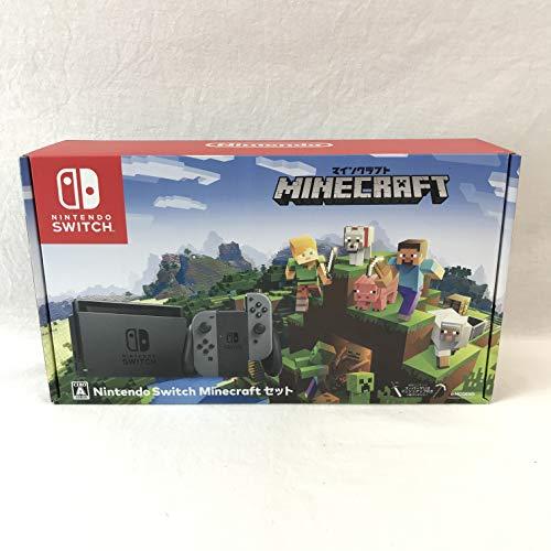 Nintendo Switch Minecraft (マインクラフト) セット(キャンペーンプリペイド番号なし)