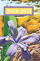 Purple Wild Flower Iris Dated Calendar Planner  2 years To-Do Lists,Tasks, Notes  Appointments for Women: ............Small Pocket/Purse Size  at-A-Glance  Schedule  Notebook (Years: Jan 2020 - Dec 2021, 25 months Weekly Planner Book)