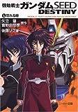 機動戦士ガンダムSEED DESTINY(1) 怒れる瞳 (角川スニーカー文庫)