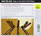 Four Seasons Concerto Rv 317 Concerto Rv 258