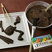 ジュラシックショコラpuzzle(新感覚!恐竜の化石発掘チョコレート)【バレンタインチョコ2011】