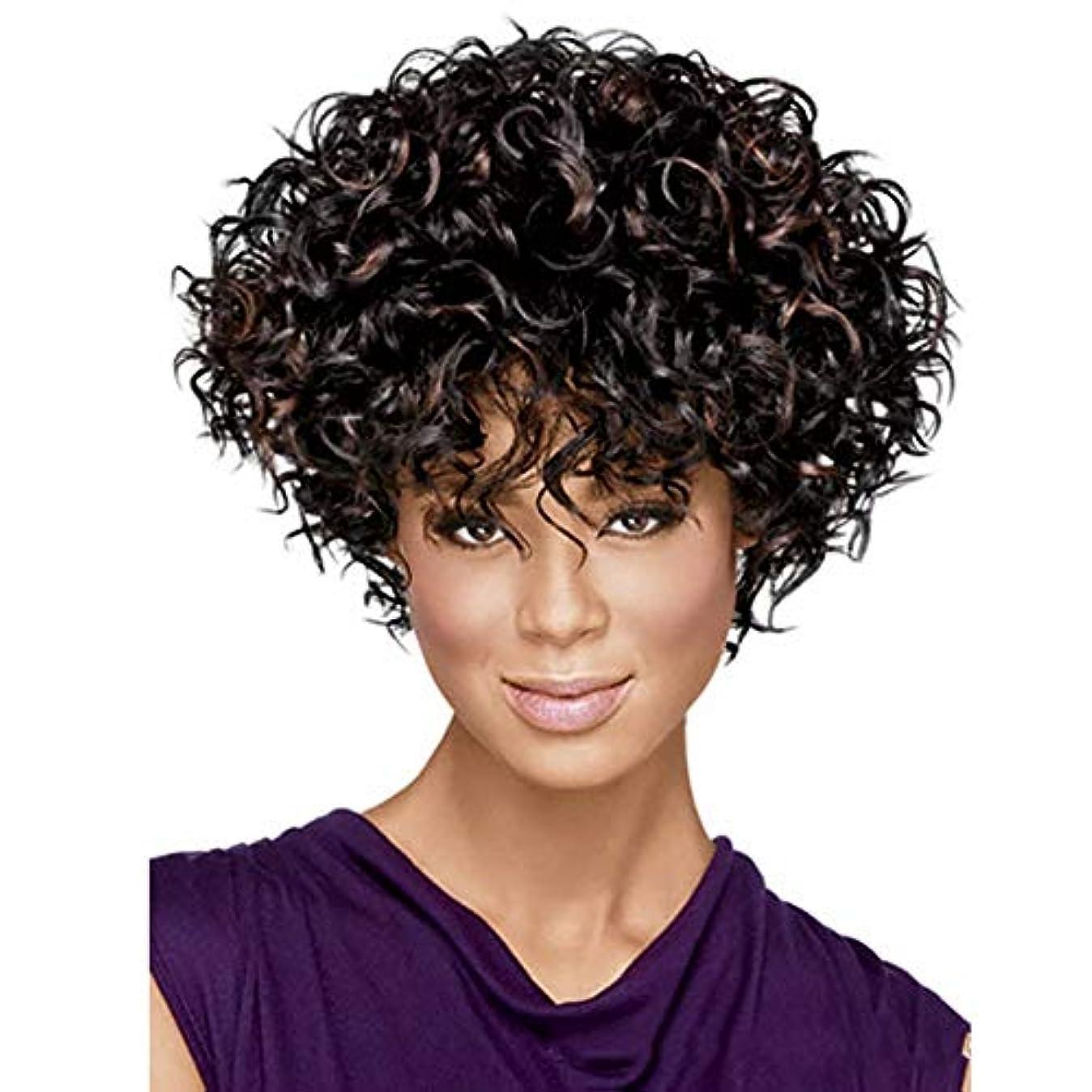 迫害スナップ装備するYOUQIU 女性の自然な人工毛かつら用ショートボブウィッグ6