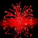 Amazon Prime Day イルミネーションライト 10メートル 100 LED電球 電池式 LED ライト リモコン付き 室外 装飾 正月 バレンタインデー クリスマス 飾り 電飾(5m, Red)
