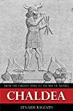 Chaldea - From the earliest times to the rise of Assyria (Illustrated) (English Edition)