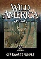 Wild America: Our Favorite Animals