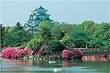 1000ピース 金の鯱・名古屋城 (50x75cm)